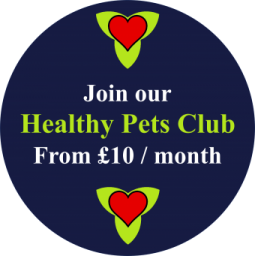 Kennel Cough Vaccine Cost >> Healthy Pets Club - Yatton Vets